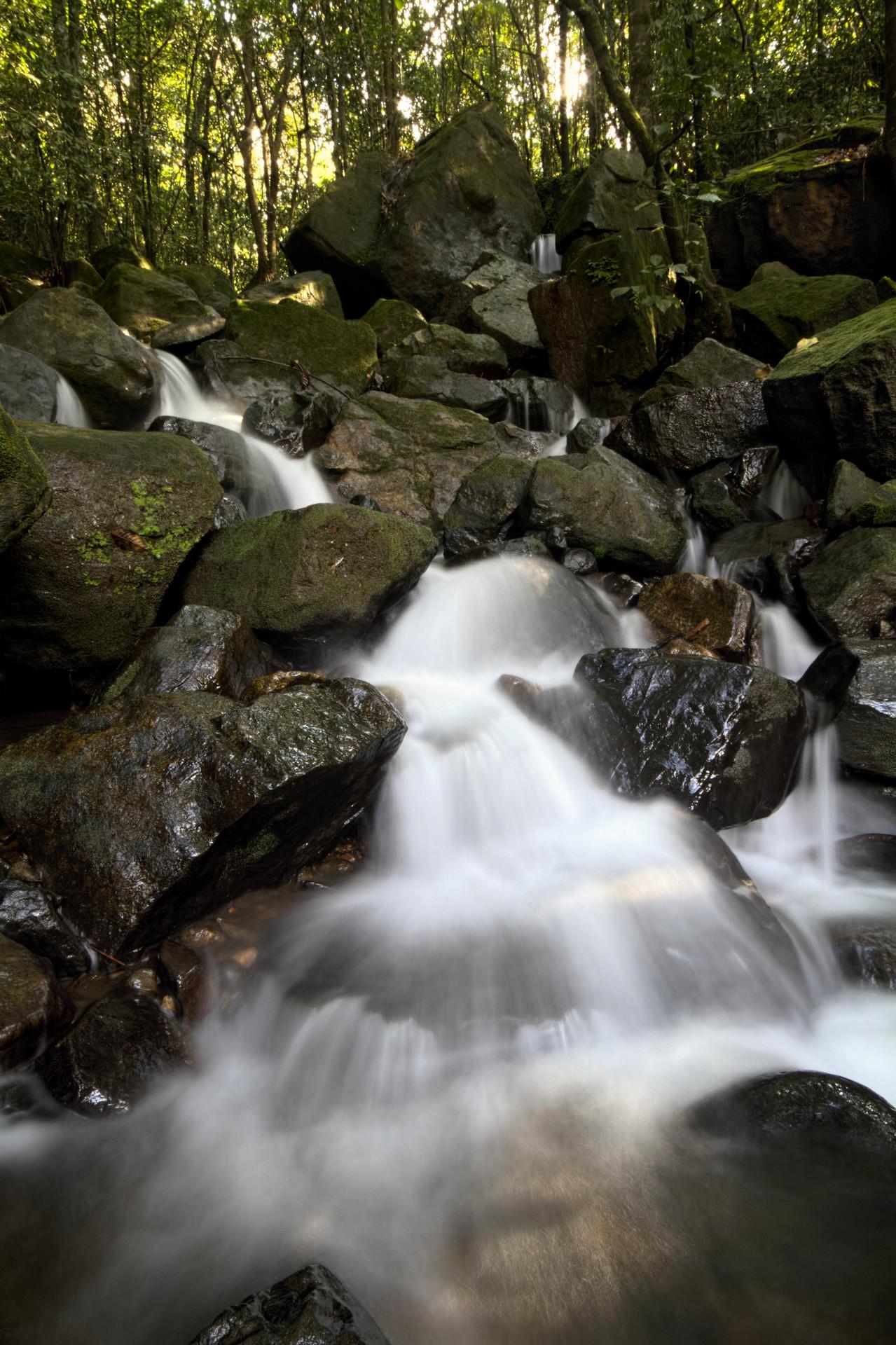 Milky Stream